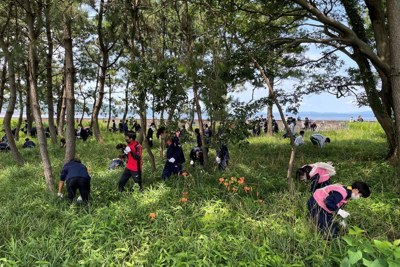 松原の育樹ボランティア